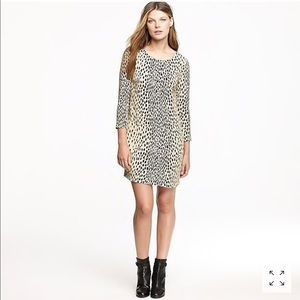 J crew Jules dress in wildcat sz 4